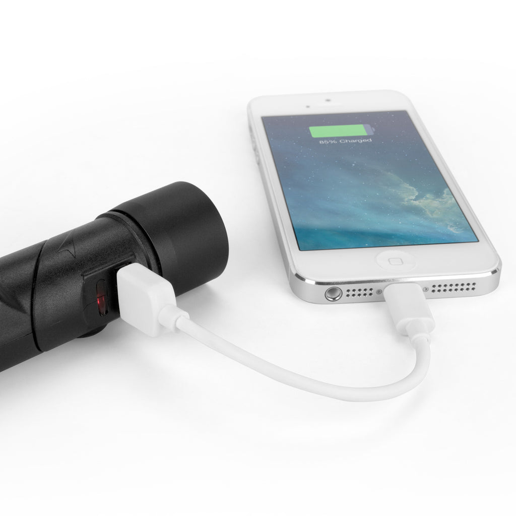 Rejuva Car Charger - Apple iPhone 4 Battery