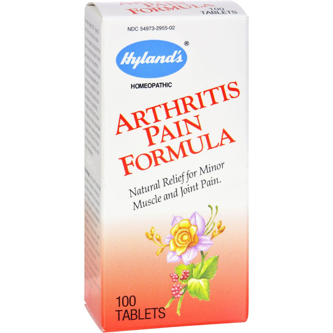 Mother Mantis: Hylands Homeopathic Arthritis Pain Formula - 100 Tablets Hyland's