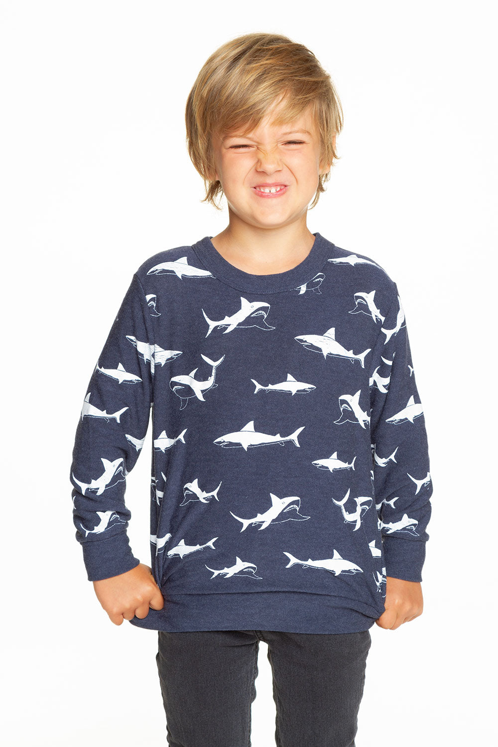 Happy Sharks BOYS chaserbrand4.myshopify.com