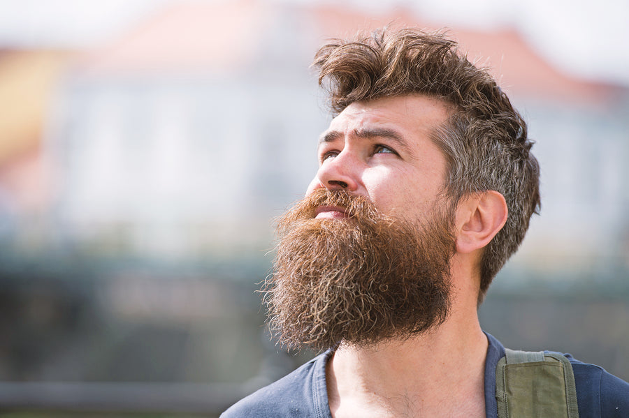 Secrets to Beard Season That'll Level Up Your Look   Wild Willies