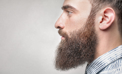 side profile of a man with a pointed ducktail beard