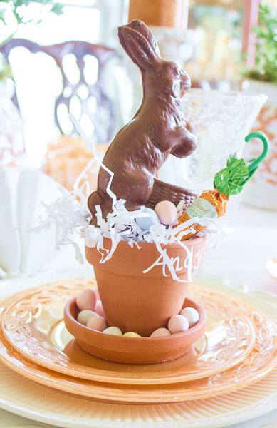 chocolate bunny in a pot
