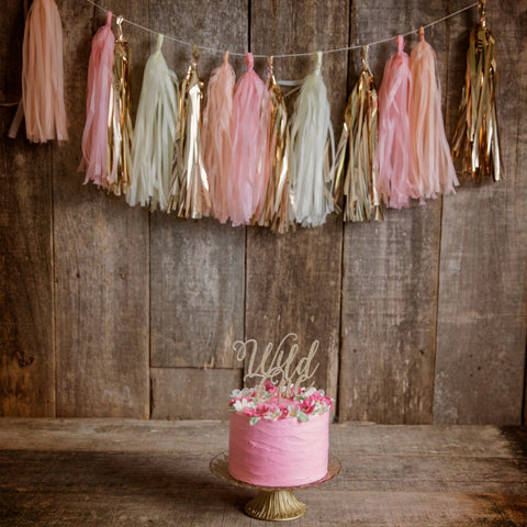 Tissue Tassel Smash Cake Garland Kit