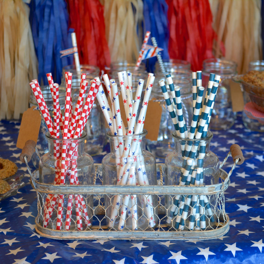 4th of July Picnic Straws