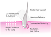 <b>Professional Hair Loss Formulations for Women</b>