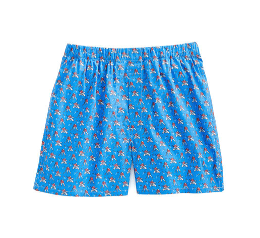 Vineyard Vines Hockey Boxer Shorts - Royal Blue