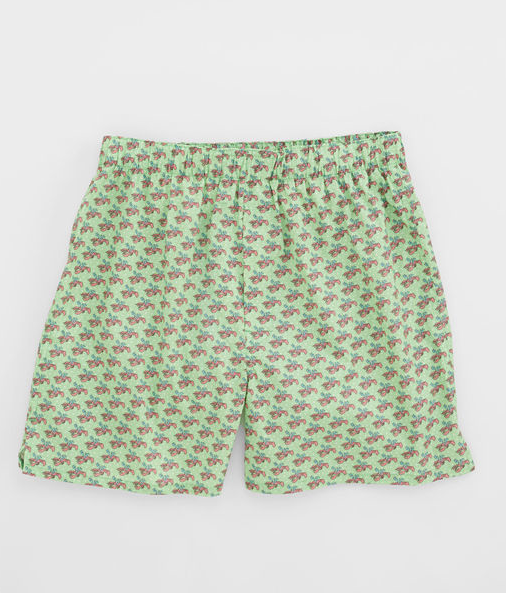 Vineyard Vines Lobster Reindeer Boxers - Wasabi