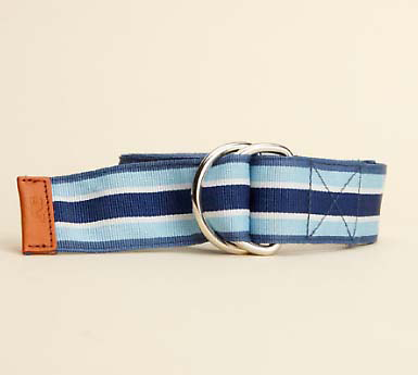 Vineyard Vines Grosgrain Ribbon D-Ring Belt - Jake Blue