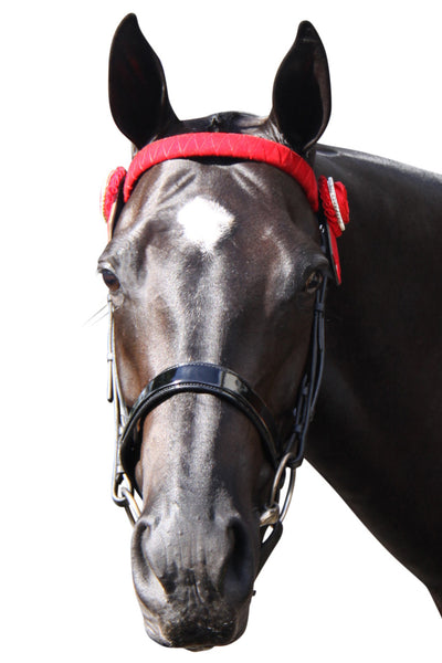 Patent Leather Noseband Urban Horsewear