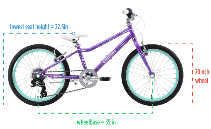 Kids Bike 20 Inch Large