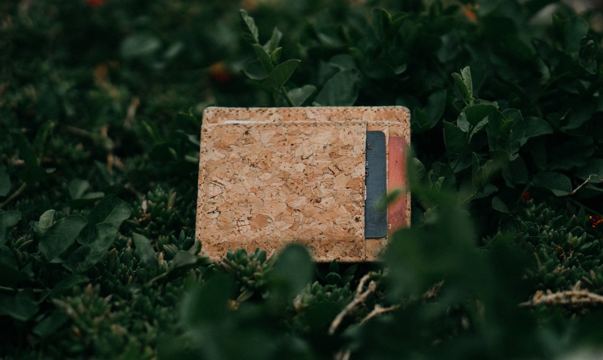 Why Cork Wallets?