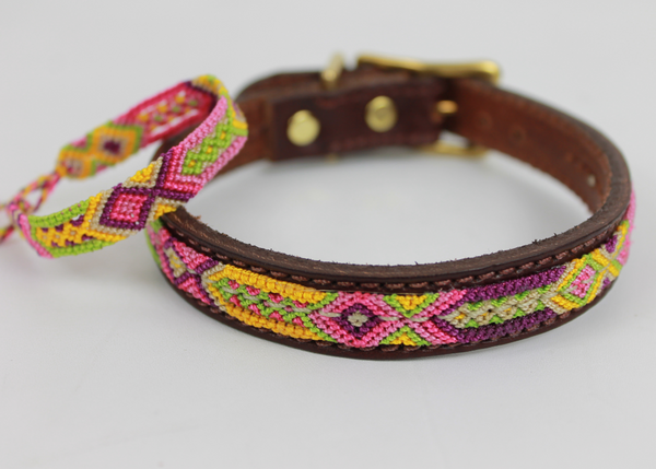 Leather Overlay Dog Collar - X-Small // Small