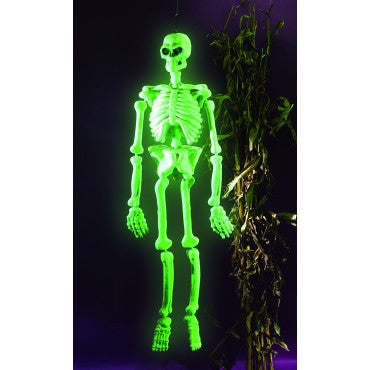 Glow-in-the-Dark Laboratory Skeleton