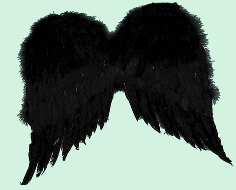 Costume Wings Black Feather Wings