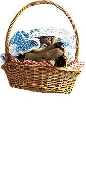 Basket with Wolf Head