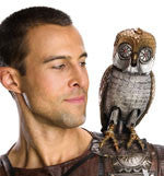 Bubo the Mechanical Owl Prop