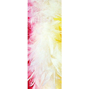 White Turkey Feather Boa