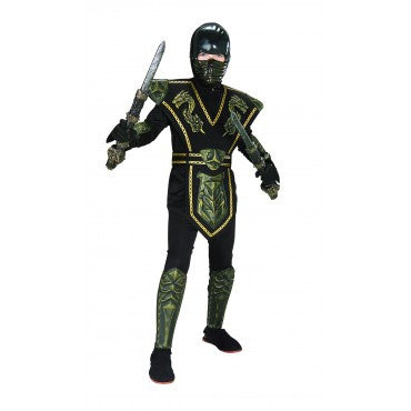 Boys Dragon Warrior Ninja Costume