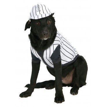 Pets Baseball Player Costume
