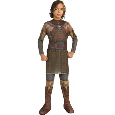 Boys The Hobbit Dwalin Costume