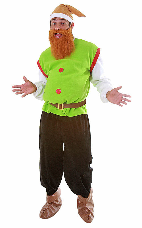 Mens Elf Costume