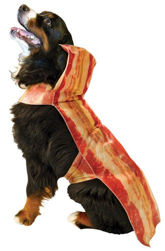 Pets Bacon Costume
