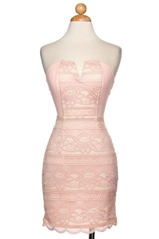 Blush Sleeveless Lace Mini Dress