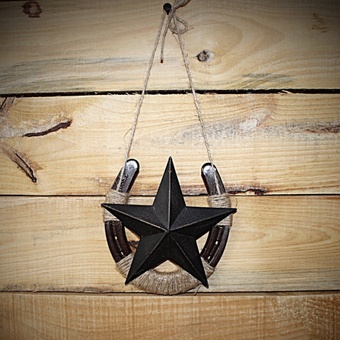 Horseshoe Wall Decor with Large Star