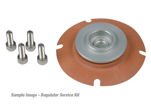 Aeromotive Inc. Carbureted Regulator Service Kit 13005