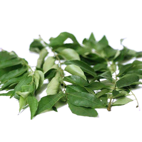 Daun Kari / Curry Leaves