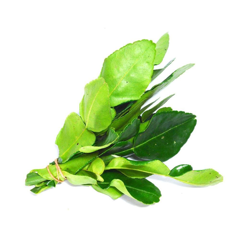 Daun Limau / Kaffir Lime Leaves