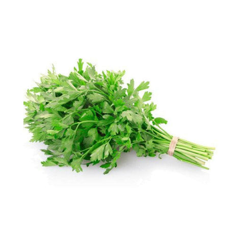 Daun Sup  / Celery Leaves