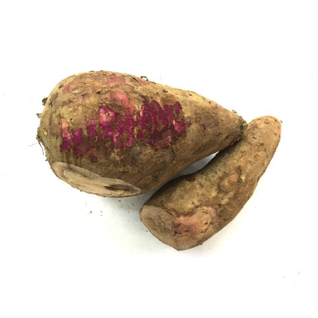 Keledek Merah / Red Sweet Potato