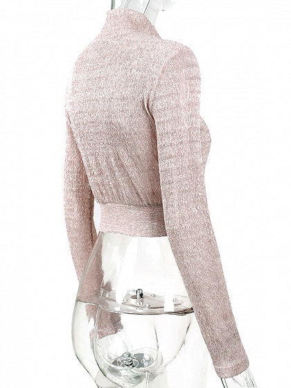 Pink High Neck Long Sleeve Sheer Mesh Crop Top