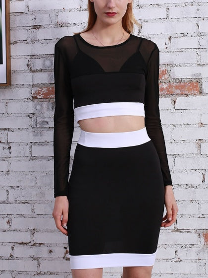 Contrast Sheer Mesh Crop Top And High Waist Skirt