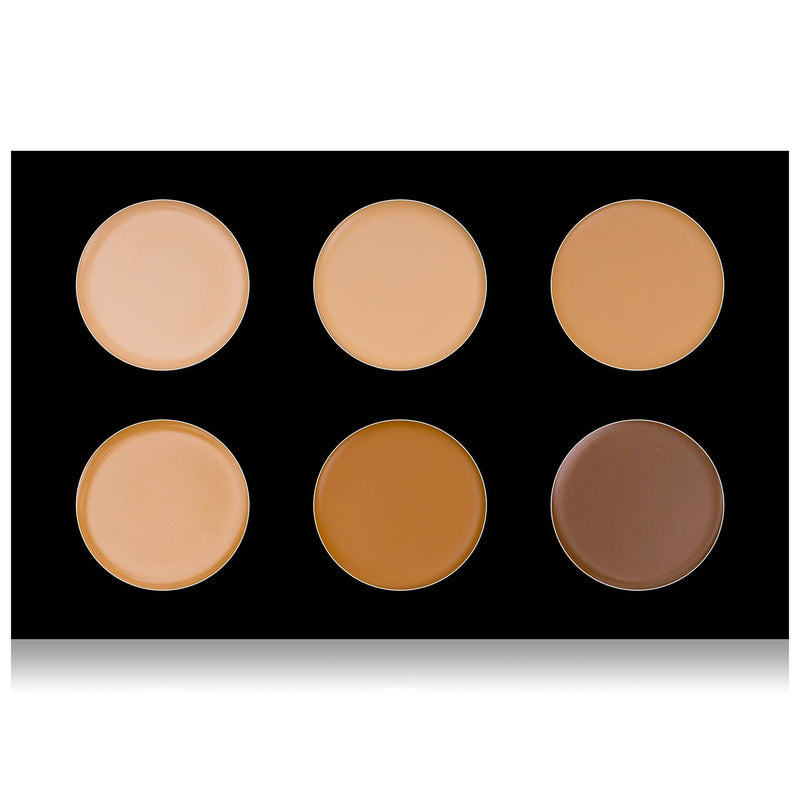 SHANY Cream Contour & Highlighting Palette