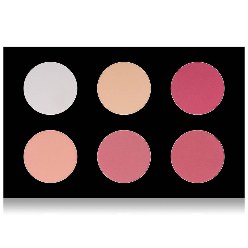 SHANY Shimmer & Matte Blush/Highlighter Palette