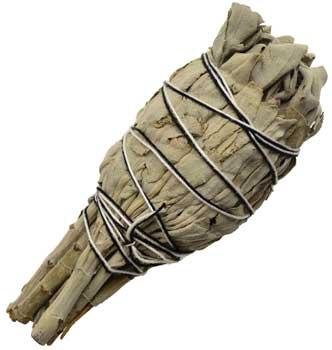 California White Sage Smudge Stick 4""