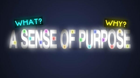 A Collective Sense of Purpose