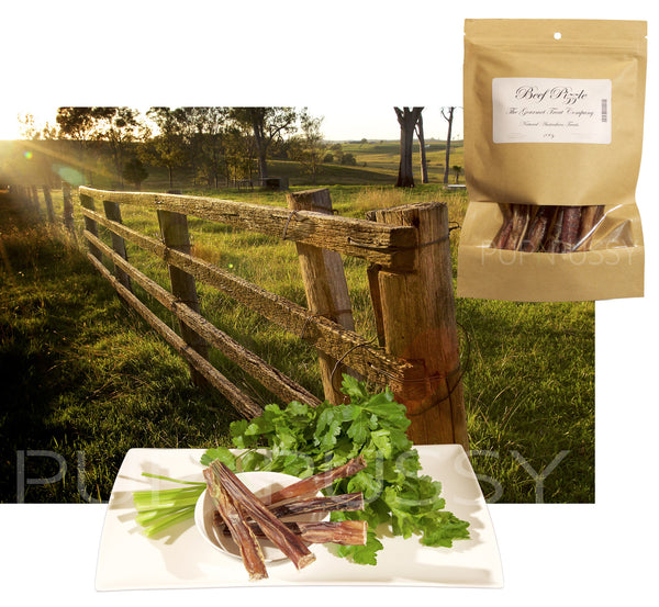 Natural Dental Chews - Australian Beef Pizzles