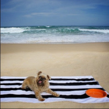 Beach Buddy Towel