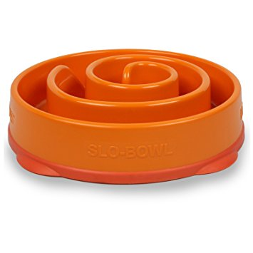 Fun Feeder Maze - Orange