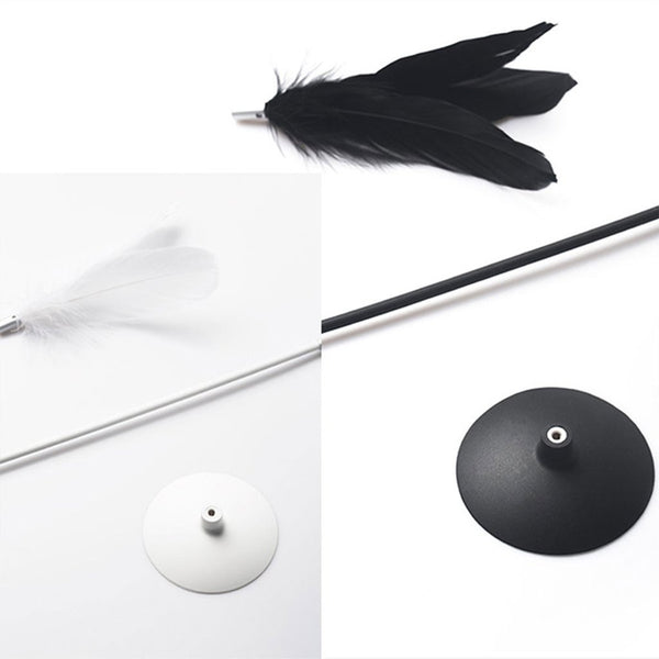 Pidan Studio Paris - Shake Feather Suction Wand