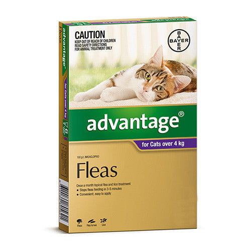 Advantage Flea  -  Cats over 4kg  -  4 pack