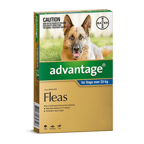 Advantage Flea  -  Dogs over 25kg  -  4 pack