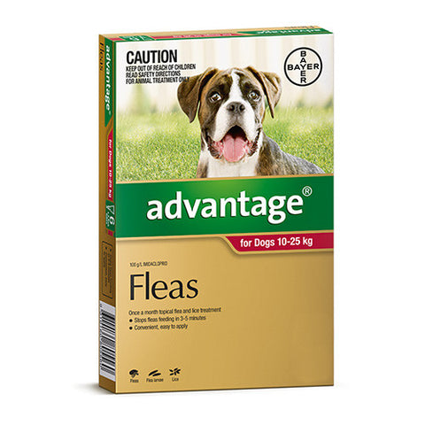 Advantage Flea  -  Dogs 10-25kg  -  4 pack