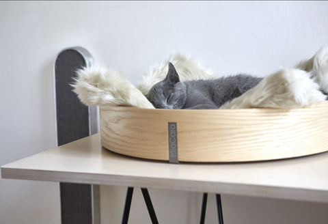 Anello Cat Basket by MiaCara