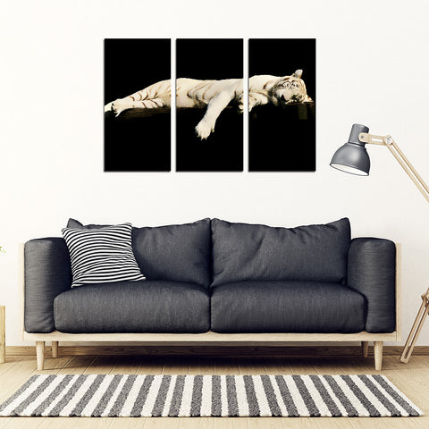 Sleeping Tiger 3 Piece Framed Canvas