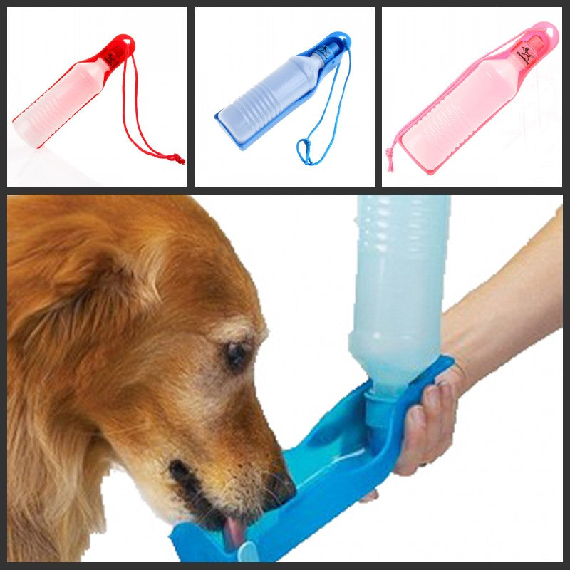 BUY DOG WATER BOTTLE DISPENSER 50 % OFF