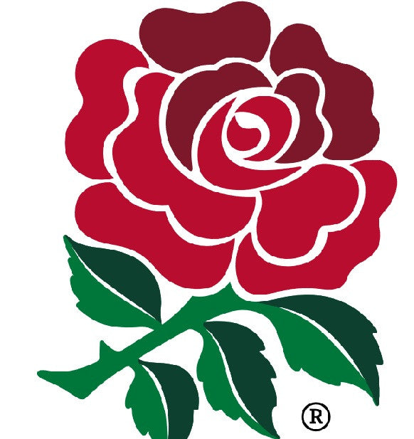Rugby Union : England